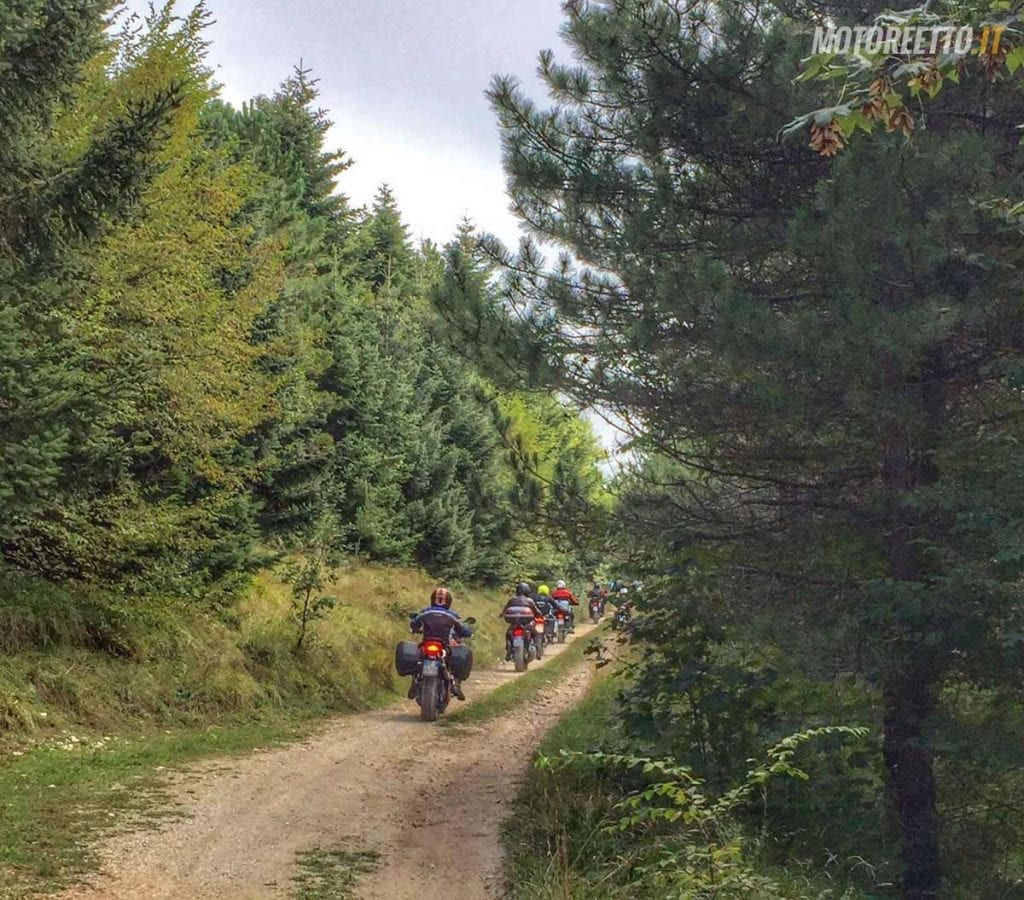 marche strade bianche nel bosco marco polo team dirty roads